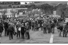CKA - festival crowd 2018 (3)